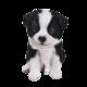 Pet Pal Sheepdog Puppy
